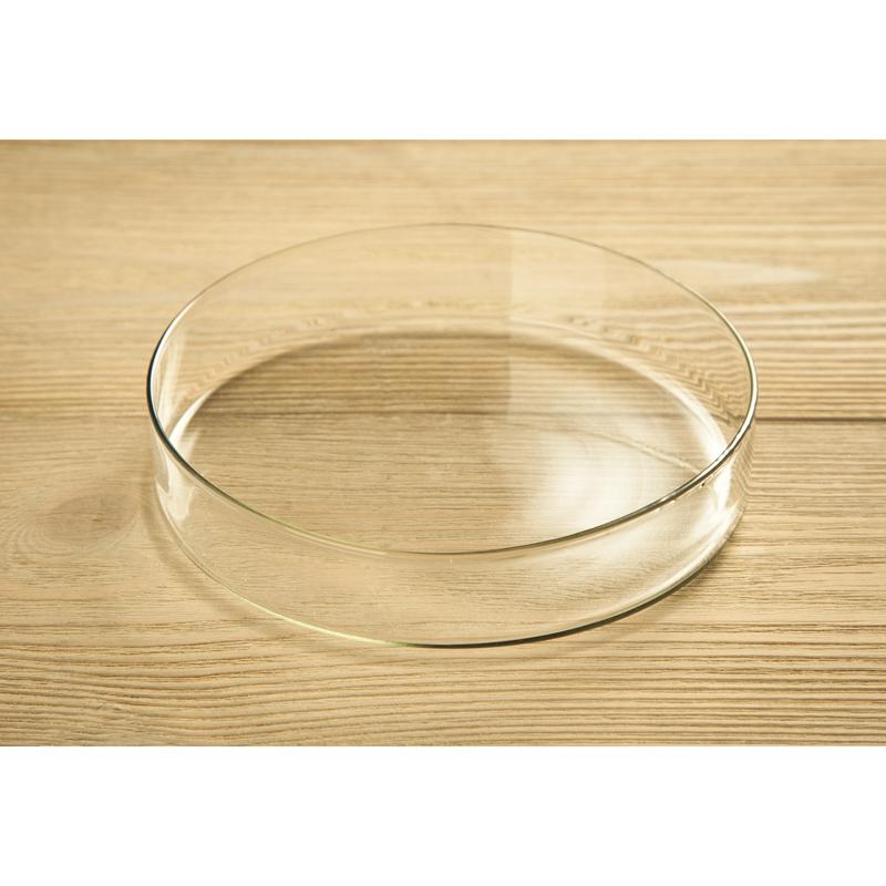 Чашка Петри стеклянная 100 мм
